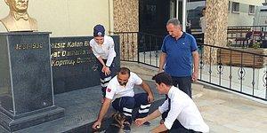 Hastanenin Acil Servisine Giderek Yaralı Ayağını Tedavi Ettiren Köpek