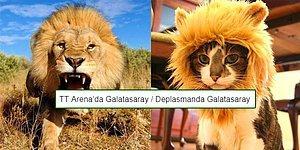 Cimbom Deplasmanda Yine Kaybetti! Akhisar - Galatasaray Maçının Ardından Yaşananlar ve Tepkiler