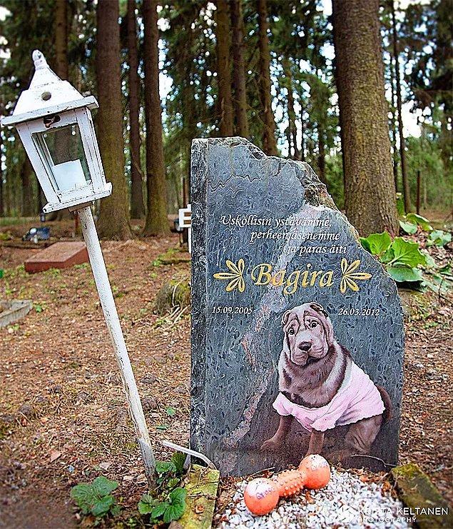 Evcil hayvan mezarlığı var.