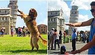 Önünde Çektirdikleri Eğlenceli ve Yaratıcı Fotoğraflarla Pisa Kulesini Şenlendirmiş 11 Kişi