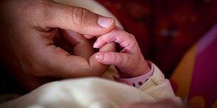 Fransa'da Pestisit Alarmı! Kırsal Kesimdeki Üç Köyde 14 Bebek Kolsuz veya Bacaksız Doğdu