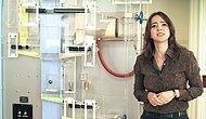 Milli Gelir Hesaplama Makinesi 'Moniac' Yeniden Çalışıyor!
