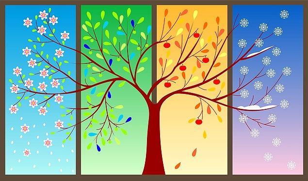 7. Güneş'in Terazi burcuna girmesiyle hangi mevsim başlar?