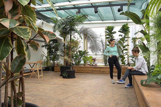 Dördüncü katta ise yemyeşil bitkiler ve binanın genelinden farklı bir tasarıma sahip Kış Bahçesi ile karşılaşacaksınız.