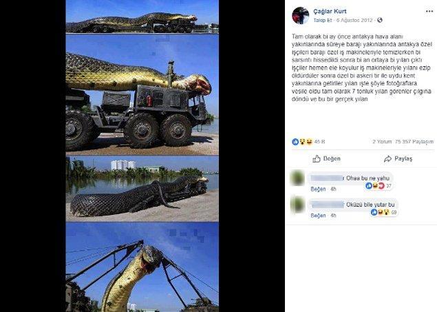"""2. """"Fotoğrafın Antakya yakınlarında görülen 7 tonluk yılanı gösterdiği iddiası."""""""