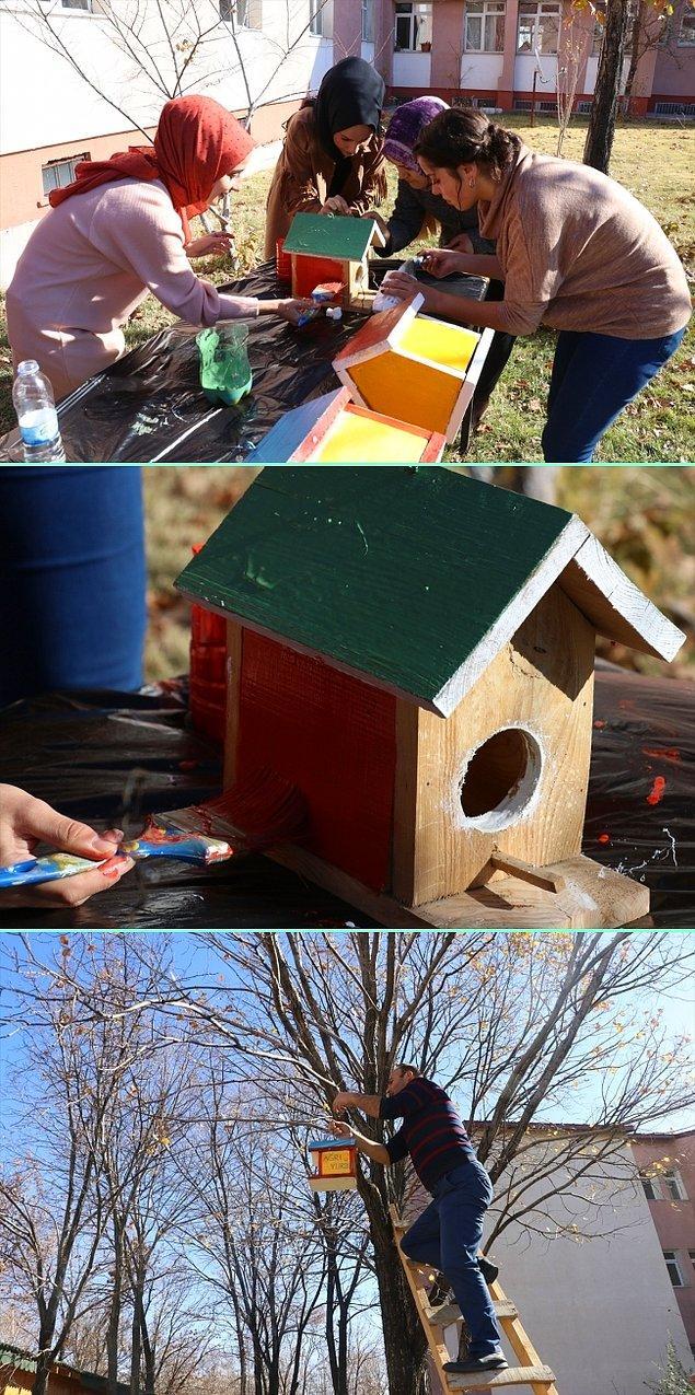 4. Ağrı'da KYK yurdu öğrencileri, kış mevsiminin sert geçtiği kentte yaptıkları kuş yuvalarını yurt bahçesindeki ağaçlara astı.