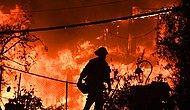 California Yangını: Can Kaybı 40'ı Aştı, Ünlü Yıldızların da Aralarında Olduğu Binlerce Kişi Evini Terk Etti