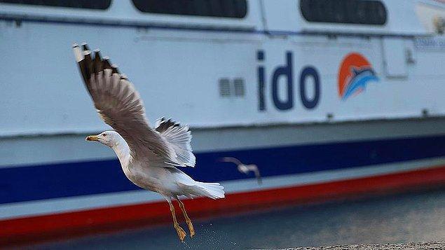 'Şirket kaynaklarından' aktarılan bilgiler: İDO'nun Bostancı-Bakırköy, Bostancı-Kabataş/Beşiktaş ve Adalar'dan oluşan iç hat seferleri 1 Aralık tarihinden itibaren artık yapılmayacak.