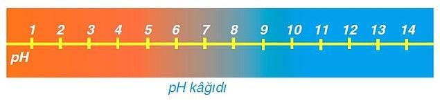 8. Hangisi turnusol kağıdını kırmızı renge çevirir?