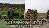Sen Çok Yaşa Mehmet Abi! 23 Yıldır Leylekler İçin Yuvalar Yapan, Köylülerin 'Değişik Biri' Dediği Diyarbakırlı Çoban