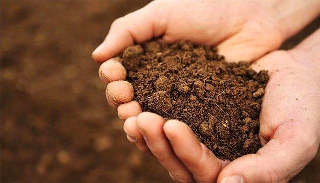 9. Ürünlerin geldiği topraklar test ediliyor mu?