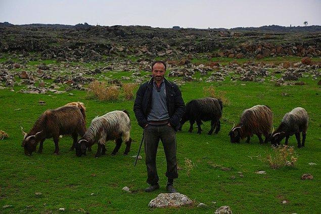 Elinden her iş gelen, leylekler için 10 kiloluk balyozu ile kayaları parçalayan ve sırtında taşıyarak yuvalar yapan Mehmet Abi'yi ayakta alkışlıyoruz! Sen çok yaşa güzel insan!