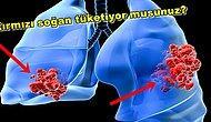 Akciğer Kanseri Riskini En Aza İndirebilmek İçin Uygulamanız Gereken 15 Önemli Tavsiye