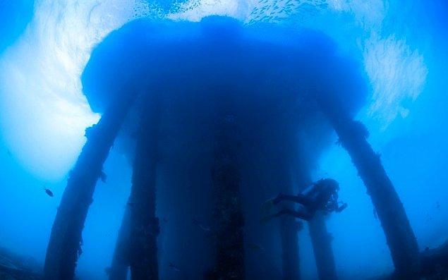 17. Filipinler Güney Leyte'de, eskiden tankerlerin ve ikmal gemilerinin kullandığı şimdi ise mercanların kaplamış olduğu terk edilmiş iskele:
