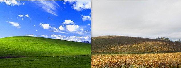 """15. Sonoma County California, en ünlü Windows masaüstü arka planlarının çekildiği yerdi; mavi gökyüzü ya da resmi adı """"Bliss"""" olan fotoğraf 1996 yılında çekildi."""