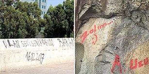 Güzel Olan Her Şeyi Mahvetmek Zorunda Mıyız? Tarihi Anıtlara Yazı Yazan Kımıl Zararlıları