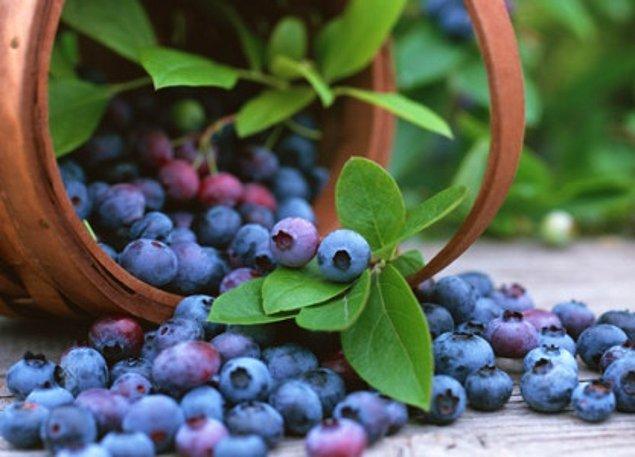 Dağ meyvelerinin önemi büyük. Ahududu ya da yabanmersini gibi meyveleri beslenme düzeninize ekleyin. Beyin sağlığı için bu detayı atlamayın.
