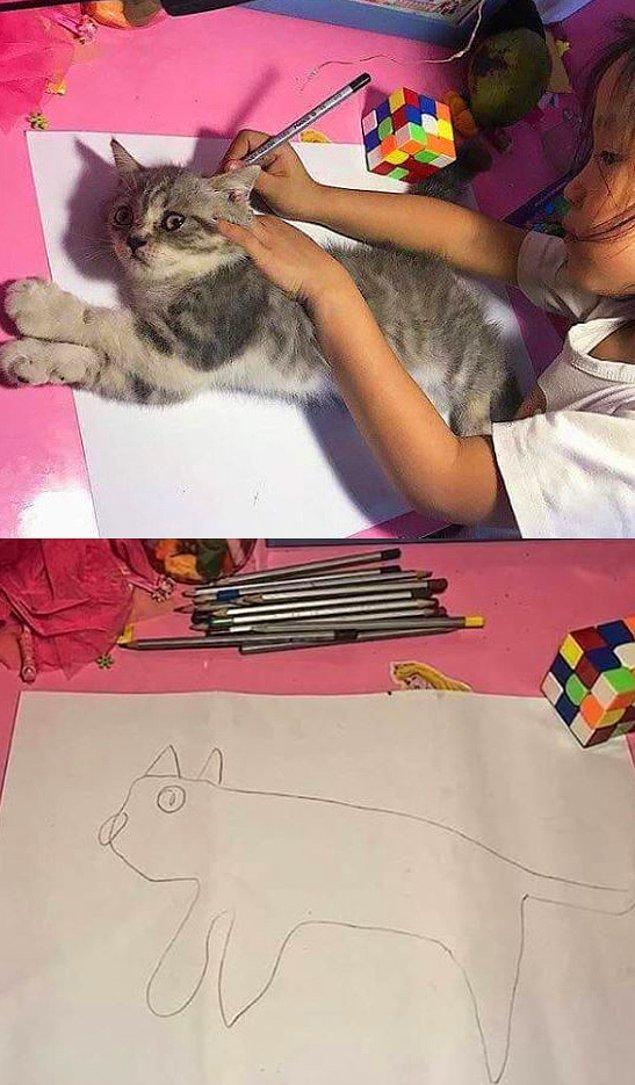 6. Harika bir çizim...