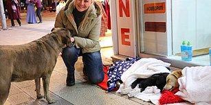 Sokak Hayvanları Üşümesin Diye Dükkanının Önüne Battaniye Serdi!