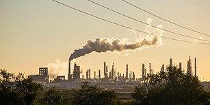 Doğaya Zarar Vermeye Devam Edersek 100 Yıl Sonra Dünya Ne Halde Olacak Merak Ediyor musunuz?