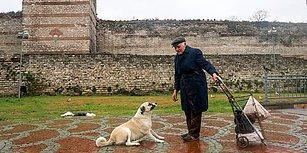 30 Yıldır Sokak Hayvanlarını Besleyen Celal Amca: 'Hayvanlara Bakanların Düşmanı Çok, Dostu Yok'
