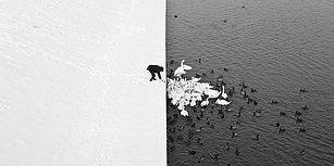 Kış Mevsimini İster Sevin İster Sevmeyin Gözlerinizden Kalpler Çıkaracak Aşırı Güzel 31 Kare