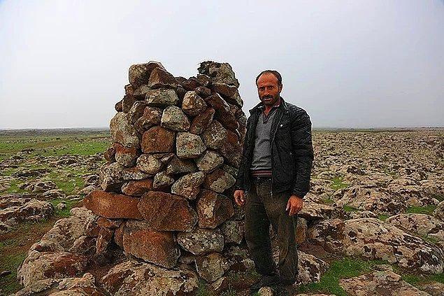 Madalyonun bir de diğer yüzü var elbette: Diyarbakır'ın Çınar ilçesine bağlı Ayveri köyünde yaşayan çoban Mehmet Salih Arslan, 23 yıldır her yere taştan kuleler yapıyor ve leyleklerin yuva sorununa çözüm üretiyor.