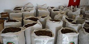 Gümrüklerde Tek Seferde Ele Geçirilen En Fazla Uyuşturucu Miktarı: İpsala Sınır Kapısı'nda 1,5 Ton Esrar Yakalandı