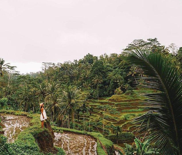 6. 20'den fazla ülkeye ve kimsenin aklına gelip gitmediği küçük köylere seyahat eden Esra