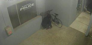 Karakolun Önündeki Bisikleti Çalmak İsterken Saniyeler İçinde Yakayı Ele Veren Beceriksiz Hırsız
