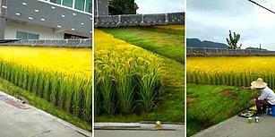 Resim Olduğunu Anlamak İçin En Az 2 Kez İzlenmesi Gereken Dünyanın En Gerçekçi Duvar Resmi