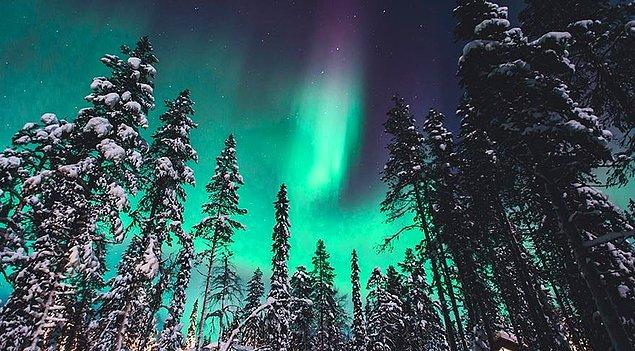 Laponya Kuzey Işıkları - Rovaniemi- Finlandiya