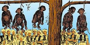 Tarihimizin Utanç Sayfası: Fuhuş Yapıyorlar Diyerek İstanbul'daki Tüm Maymunları İdam Ettiren Maymunkeş İmam