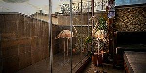 Yaralı Halde Bulup Evine Getirdi: Bursalı Hayvansever, Evde Flamingo ve Baykuş İle Birlikte Yaşıyor