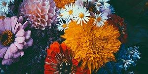Hangi Durumda Hangi Çiçeği Yollayacağınızı Biliyor musunuz? :) 9 Maddede Çiçekler ve Anlamları