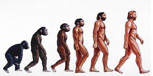 Neden Hayatta Kalan Tek İnsan Türü Olduğumuzu Daha Önce Hiç Merak Ettiniz mi?