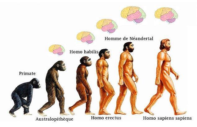 Varlığımızın ilk 100.000 yılı boyunca, davranış şeklimiz Neandertaller ile benziyordu. Ancak daha sonra değiştik…