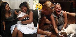 Yüreğimiz Paramparça! Evcil Hayvanları ile Son Anlarını Yaşayan İyi Yürekli İnsanların İçinizi Dağlayacak Fotoğrafları
