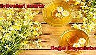 Fallarına Bakmak Yerine Hemen Kurutup Demlemek İsteyeceğiniz Papatya Çayının 13 Mükemmel Faydası