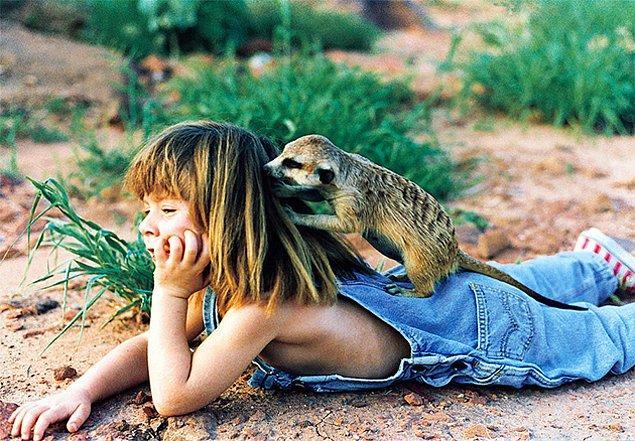 Küçük kız, vahşi Afrika hayvanlarıyla arkadaş olmayı hiç garipsemedi.