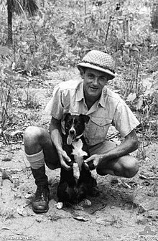 """11. İkinci Dünya Savaşı sırasında Avusturya'da bir köpeğin duyma yetisi o kadar keskindi ki Hava Kuvvetleri personelini Japon uçakları gelmeden 20 dakika önce, henüz radarlara girmemişlerken uyarabiliyordu. """"Gunner"""" isimli bu köpek ayrıca düşman ve ittifak uçaklarının seslerini de ayırt edebiliyordu."""