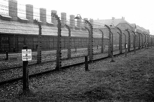 Auschwitz'in dikenli telleri, 1945 sıraları.