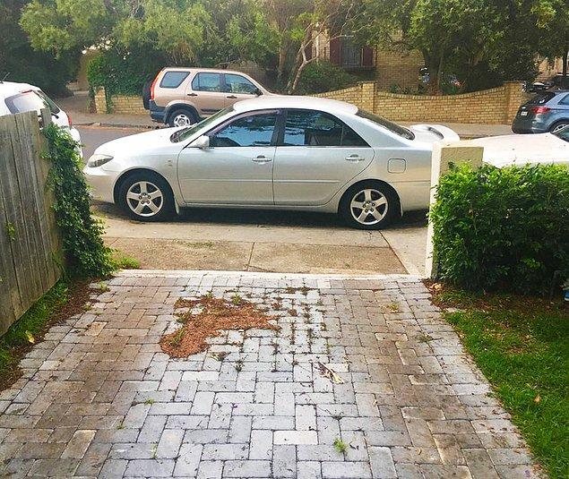 4. Hayır yani nereye park edeceğinizi de mi biz söyleyelim?