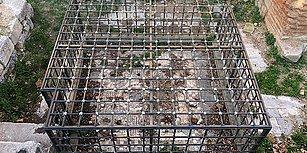 Koruma Amaçlı Kafese Alınmıştı: Tarihi Mozaik Çöpten Görünmüyor