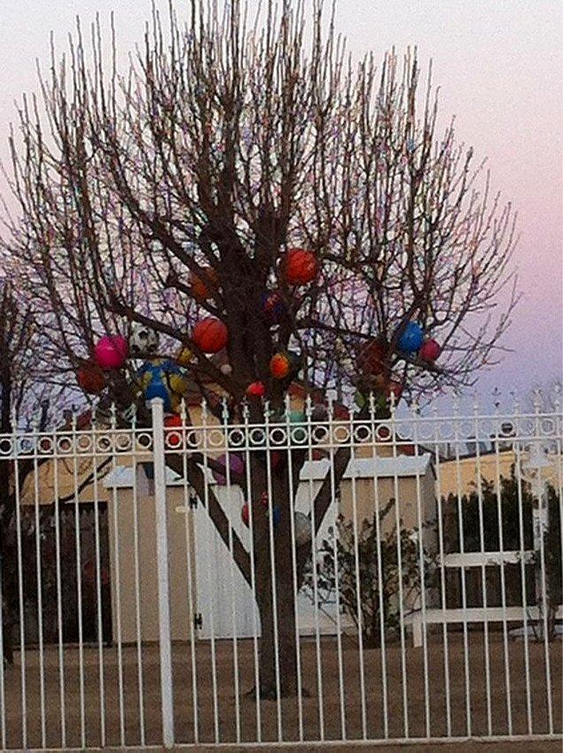 """12. """"Komşumun bahçesine ne zaman top kaçsa alıp topları ağacına koyuyor ki kimse geri alamasın..."""""""