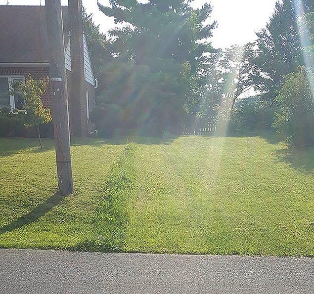 """16. """"Yaşlı komşumun çimlerini biçmiştim. Solunda oturanlarsa bir gün sonra kendilerininkini biçtiler. Galiba tam olarak mülk sınırlarını biçmemişim."""""""