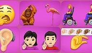 2019'da Kullanacağımız Yeni Emojiler Geliyor: İşitme Cihazı, Orangutan, Sarımsak ve Daha Neler Neler!