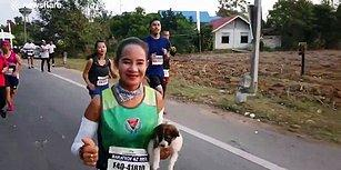 Maraton Koşusu Sırasında Fark Ettiği Yardıma Muhtaç Köpeği Kucağına Alarak Maratona Devam Eden Müthiş İnsan