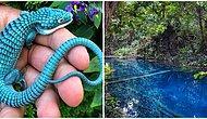 Başka Bir Dünyadanmış Gibi Görünen Birbirinden Büyüleyici Bu Fotoğrafları Mutlaka Görmelisiniz!