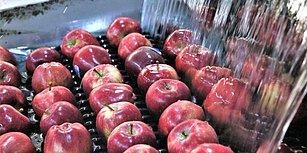 Bitki Sağlığı Belgeleri Geçersizmiş: Türkiye'den Giden 19 Ton Elmanın Rusya'ya Girişine İzin Verilmedi